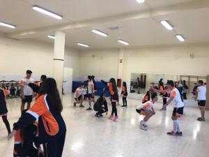 Escolapis DALE 2019-5