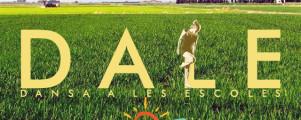 Valencia-Albufera-Arrozales-Verde-Tractor